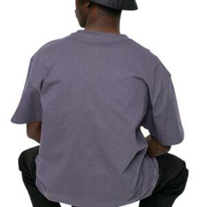 CARHARTT Chase T-shirt provence